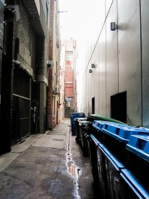 One Day In Melbourne with the Contax TVS Digital (24 of 32)