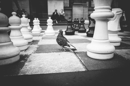 SITHOM 4 - Checkmate, Pigeon
