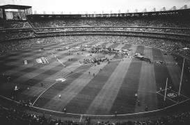 AFL GF (12 of 29)